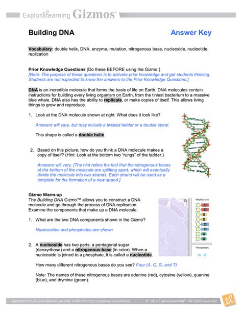 section 12 4 mutations answers 100 mutations worksheet key 12 cellular