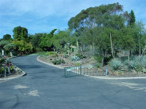 Quail Botanical Gardens by Pictures Of Cactus Gardens With Cacti On Line Guide
