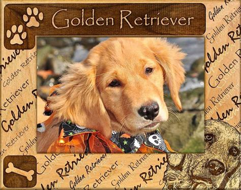 golden retriever shop golden retriever name picture frames