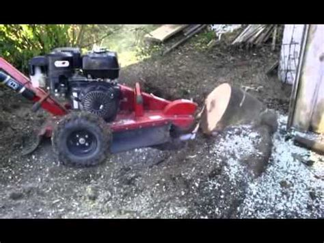 home depot stump grinder rental