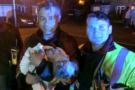house of a dog is called dog called hope given kiss of life by firefighters after being rescued from bedroom