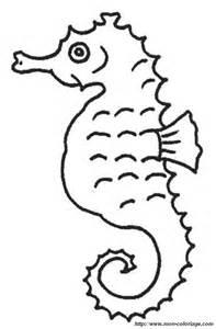 Coloriage De Hippocampe Dessin Hippocampe15 3 224 Colorier