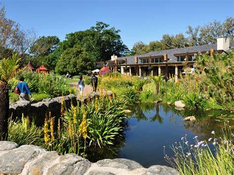 Pictures Of Kirstenbosch Botanical Gardens Kirstenbosch National Botanical Garden Things To Do In Cape Town
