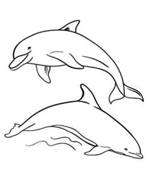 dolphin coloring page pdf djur m 229 larbilder f 246 r barn teckningar online till skriv ut
