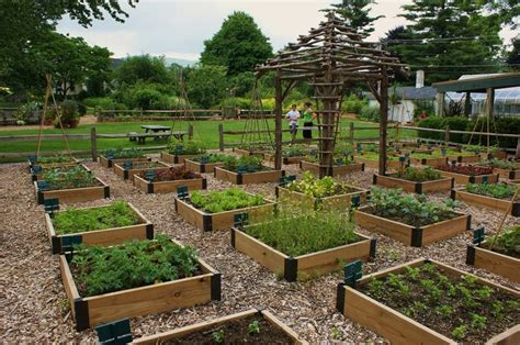 Vegetable Garden Raised Beds огород Pinterest Vegetable Box Garden