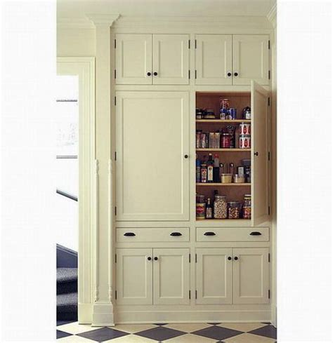 Built In Pantry Cabinet Kitchen Pantry Cupboard Designs Built In Pantry Cool
