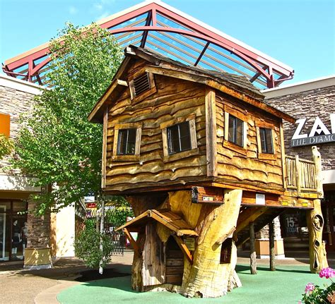 houses designs photos tree house design ideas for modern family inspirationseek com