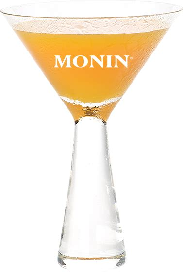 martini orange orange martini monin profi shop