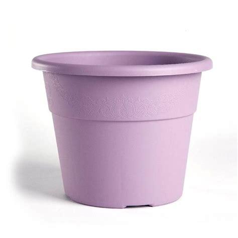 edera vaso vaso hedera iniezione bamagroup