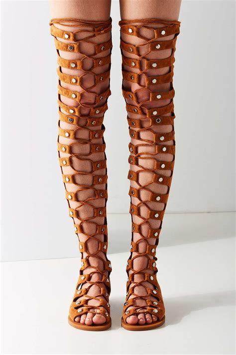jeffrey cbell knee high gladiator sandals jeffrey cbell knee high gladiator sandals 28 images