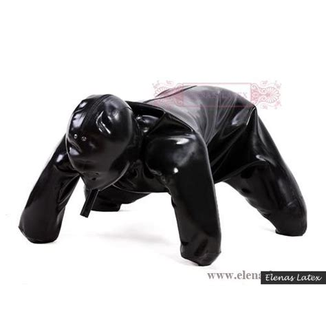 puppy in a suit dg1 suit now also available as