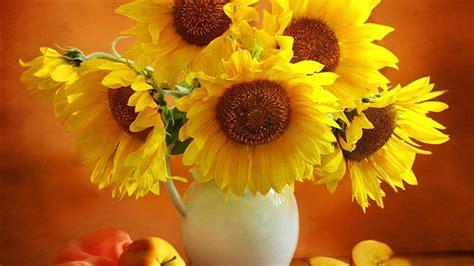 wallpaper hd widescreen high quality desktop flower yellow flowers desktop wallpaper wallpaper high