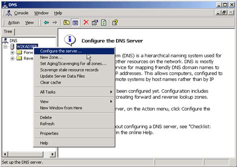 How To Setup Dns Lookup Install And Configure Windows Server 2003 Dns Server Petri