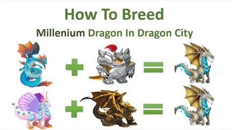 when to breed a how to breed four elemental dragons in city doovi