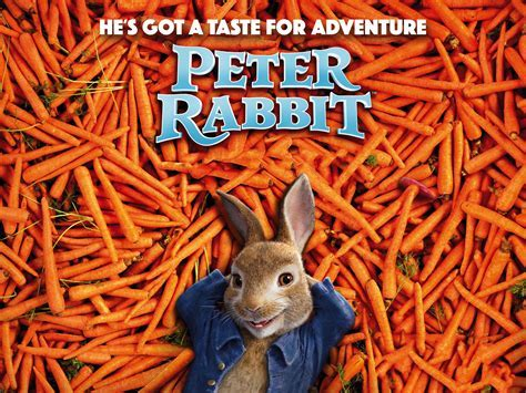 Peter Rabbit 2018, HD Movies, 4k Wallpapers, Images
