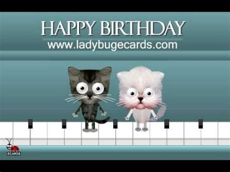 happy birthday cats on a piano ecard by ladybug