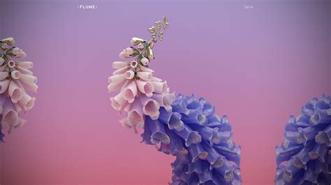 flume skin bass boosted  album youtube