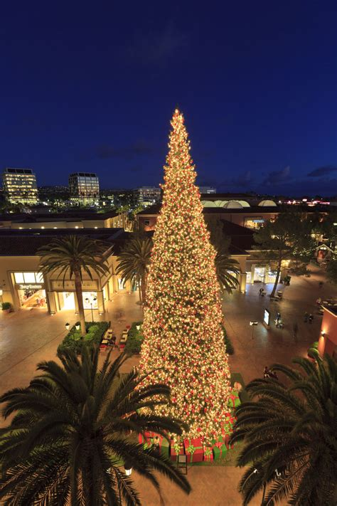 round up of top events and happenings in newport beach ca