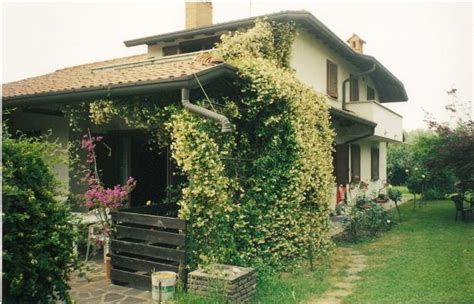 giardino casa casa moderna con giardino circostante notizie it