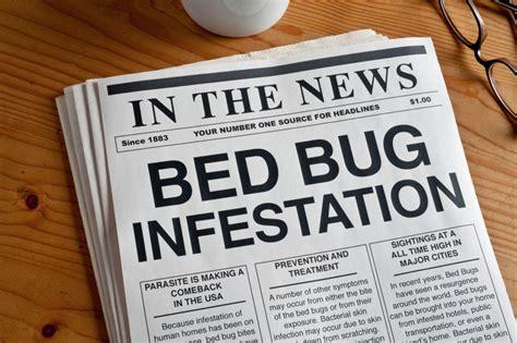 bed bug infestation signs 5 signs you have a bed bug infestation bain pest