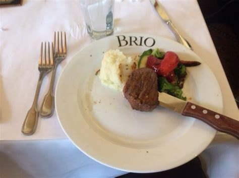brio tuscan grille brunch find a brio location brio tuscan grille italian food