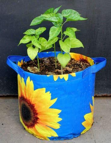 Harga Planter Bag 2016 planter bag sunflower print 15 liter bibitbunga