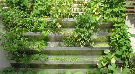 Como fazer uma horta vertical caseira?   Saúde Melhor