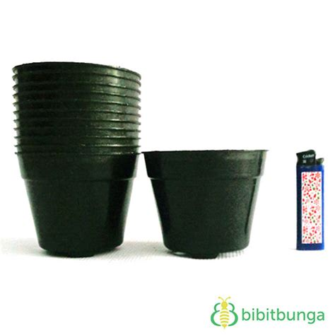 Pot Plastik 10 Cm Dan Tatakan pot plastik hitam 216 10 cm jual tanaman hias