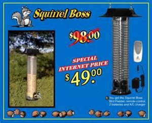 official squirrel boss website squirrel proof bird