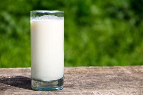 Milk Is the about milk what the dairy industry doesn t want