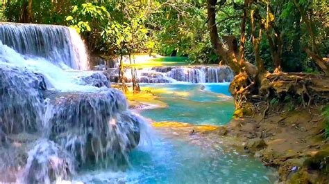 waterfall and jungle sounds nature relaxation