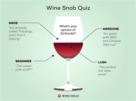 what of are you quiz are you a wine snob or wine awesome quiz wine folly