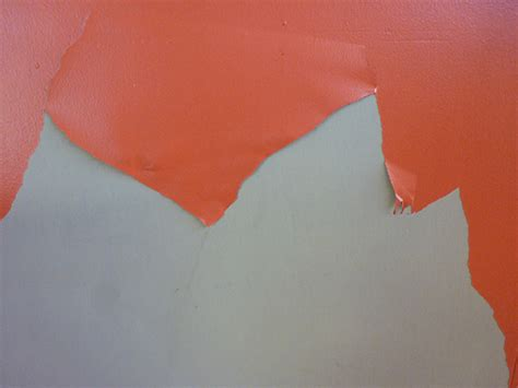 temporary peel off wall paint wallpaper that peels off hd wallpapers blog