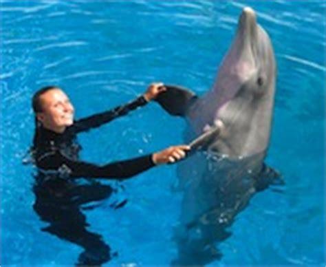 los animales marinos marine 8467535709 mission values imata international marine animal trainer s association