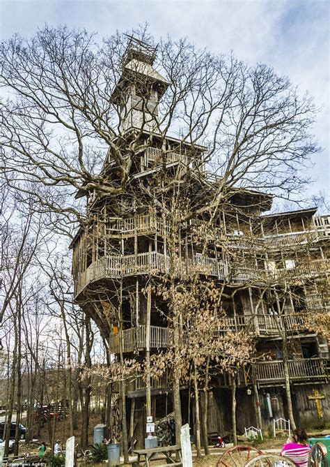 The Tree House Stories world s tallest tree house reaches ten stories high