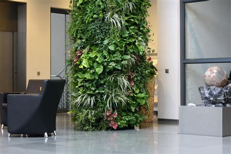 pflanzen raumteiler plant ed wall pflanzen paravent gr 252 ner raumteiler