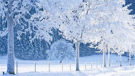 wallpaper neve frozen snowy background hd desktop wallpapers 4k hd