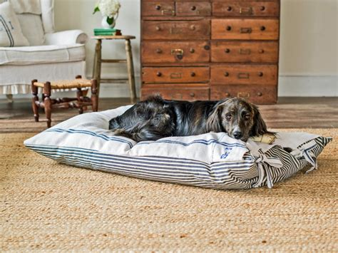 dog bed diy pet projects make a diy dog bed hgtv