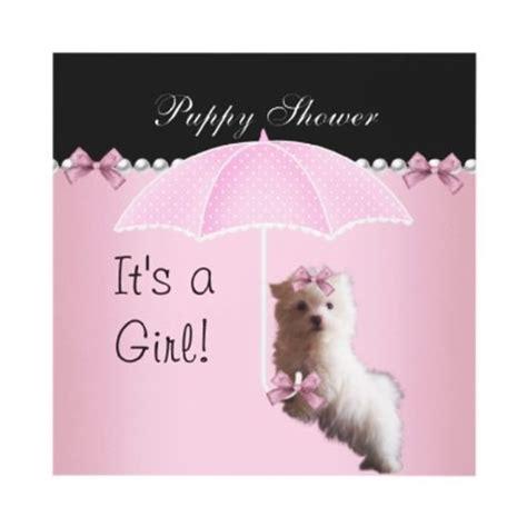 puppy shower puppy shower pink
