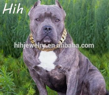 cadena para perro alemana fuerte de acero inoxidable productos para mascotas perro