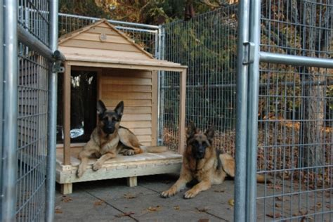 insulated dog houses for extra large dogs free dog house building plan large dog house