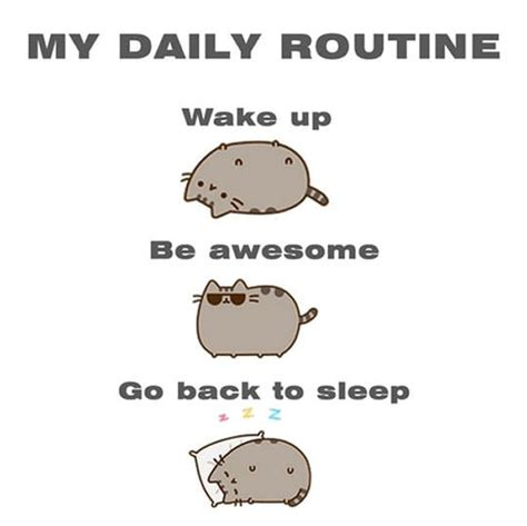 Pusheen Cat Meme - my daily routine pusheen know your meme