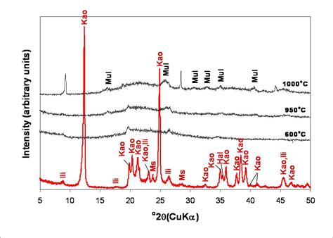 xrd pattern muscovite synthesis of zeolites from geological materials and