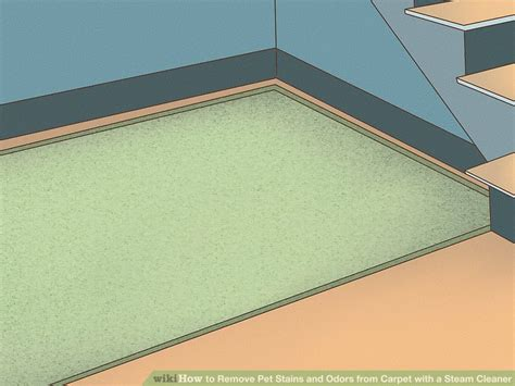 how to remove urine from carpet how to remove urine stains and odor from carpet farmersagentartruiz