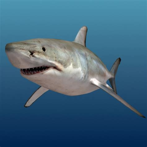 Kaos 3d Print Bloody Shark shark 3d model ready max ma mb cgtrader