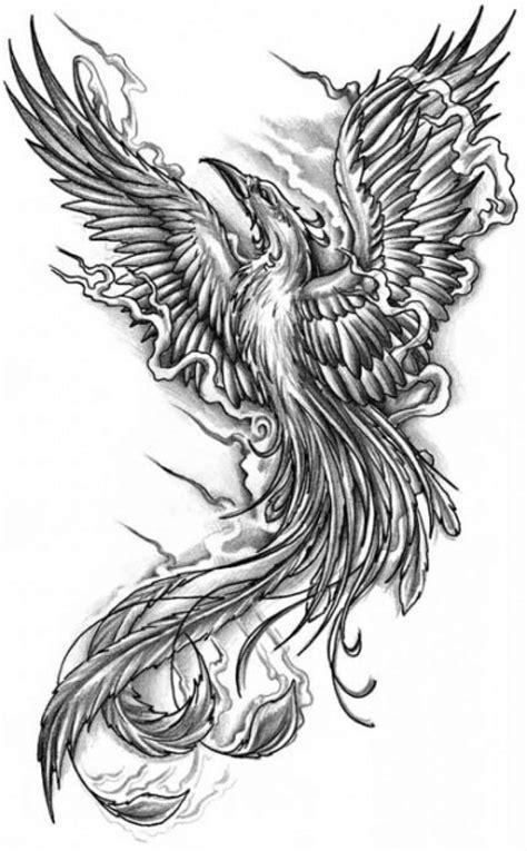 black and grey phoenix tattoo designs 52 black phoenix tattoos collection