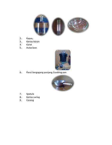 Bibit Jamur Tiram Fo cara membuat bibit jamur f0 pda