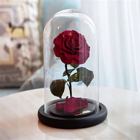 forever rose in glass dome forever rose the rose stands at least 3 years with water