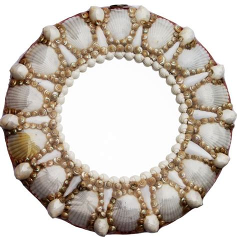 shell bathroom mirror 109 best images about shells on pinterest conch shells painted sea shells and sea