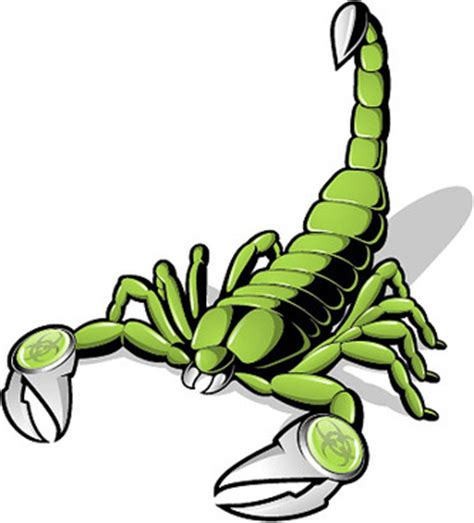 scorpion vector free vector download 51 free vector for